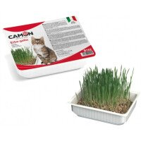 Camon Трева за Котки 100г