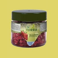 JR Terra Храна за Влечуги - Ягоди 10гр