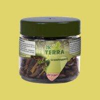 JR Terra Храна за Влечуги - Скакалци 15гр